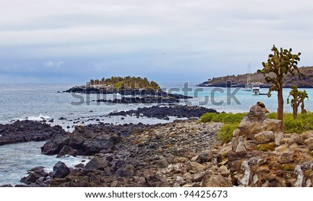 View over cacti and weathered cliffs at Barrington Bay, Galapagos