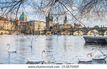 View over Charles bridge, Stare Mesto, Vltava river and swans in Prague, Czech Republic, on a clear winter day - stock photo