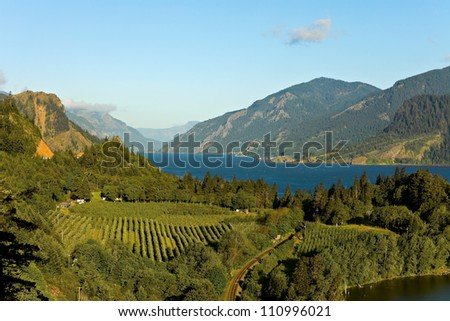 View over Columbia River,  Columbia River Gorge, Oregon. - stock photo