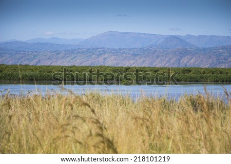 view over Nile into DR Congo - stock photo