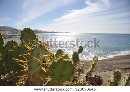View over Playa de las Americas, Tenerife - stock photo