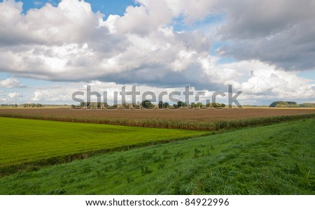 View over the colorful fields near the Dutch village of Drimmelen, North-Brabant - stock photo