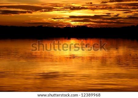 View over the Laguna at sunset. National Park Cuyabeno. Ecuador - stock photo