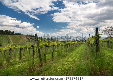 View over Vienna with blue sky and clouds - stock photo