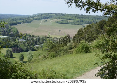 View over vineyard and countryside from Box Hill near Dorking. Surrey. England. With heat haze. - stock photo