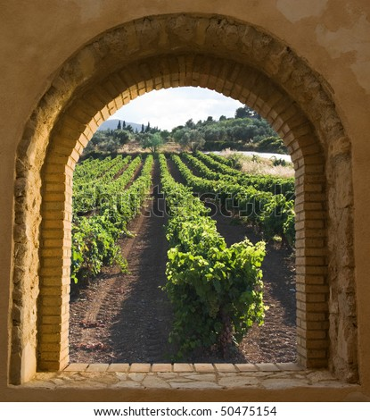view through a window arched stone and brick along the rows of a vineyard at the evening - stock photo