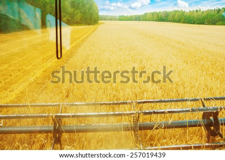 view through cabin of combine harvester in time harvesting wheat - stock photo
