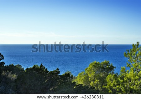 View through pine trees to the deep blue sea. Mediterranean vegetation and blue seascape. Summer scene with copy space. - stock photo