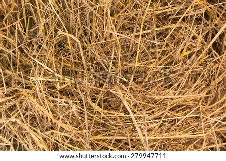 View to straw closeup as background - stock photo