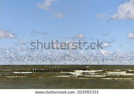View to the Baltic sea. - stock photo