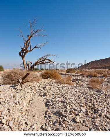 View to the Dead Sea from the Judean Desert - stock photo
