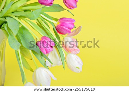 View to the easter tulips over yellow paper - stock photo