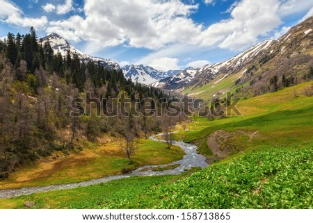 View to the foothills of the Caucasus mountains over flowers and stream near Arkhyz, Karachay-Cherkessia, Russia