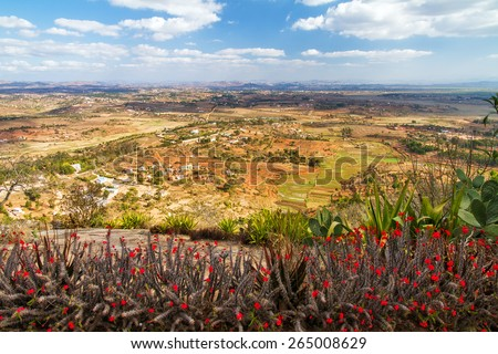 View towards Antananarivo seen from the royal hill Ambohimanga in Madagascar with crown of thorns flowers (Euphorbia milii) - stock photo