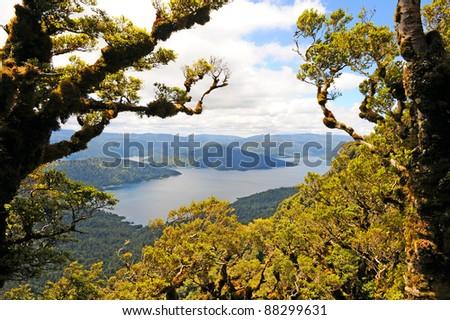Viewpoint on Lake Waikaremoana Great Walk, New Zealand - stock photo