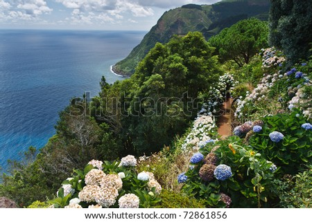 Viewpoint Ponta da Madrugada with huge amount of blooming hydrangeas in Sao Miguel Azores island - stock photo