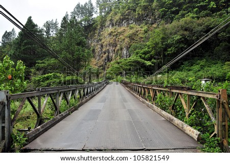 Views from central Panama / Bridge to the Rain Forest - stock photo