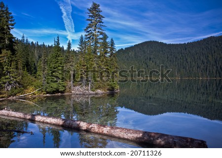 Views of a lake and trees in a mountains - stock photo