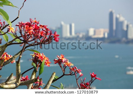 Views of Pattaya from a high point, Thailand - stock photo