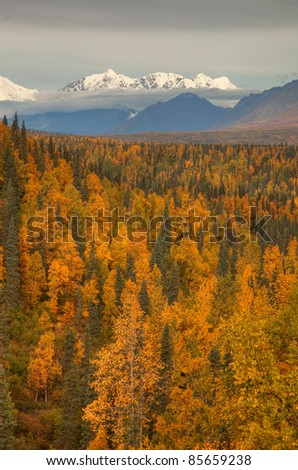 Views to Mount Mckinley and Denali National Park in Autumn Alaska North America - stock photo