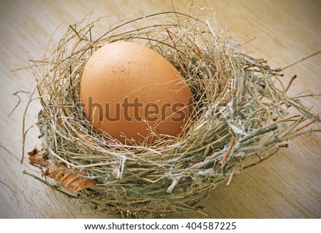 Vignette Style, Egg in the Nest on Wooden Background. Photoshop Vintage Effect.
