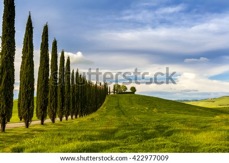 Villa in Tuscany with cypress road, seasonal nature landscape vintage hipster background