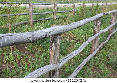 Village cattle-pen with wooden fence