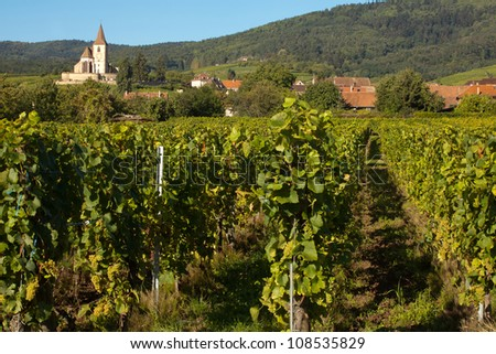 Village church of Hunawihr wine village in the middle of vineyards of Alsace, France