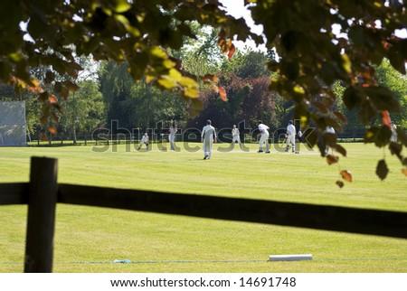 village green cricket match - stock photo