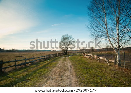 village landscape, wooden fence, lonely tree, village road, spring
