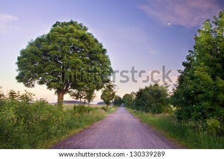 village road - stock photo