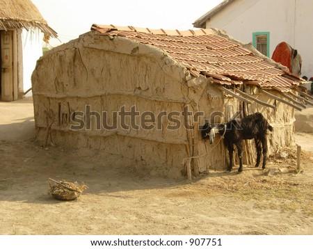 village scene in india - stock photo