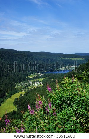 Village with lake in the valley, a clear summery piece of nature. - stock photo