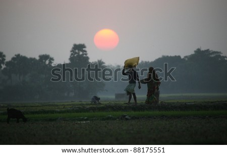 Villagers return home after a hard day on the rice fields, Sundarbans, West Bengal, India - stock photo