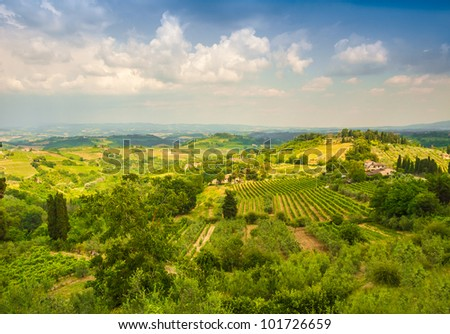 Vinci - a small village in Tuscany, Italy, where Leonardo da Vinci was born.. Landscape with vineyards, olive trees and cypresses - stock photo