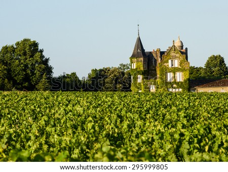 Vine-clad chateaux overlooking vineyard in Bordeaux, France - stock photo