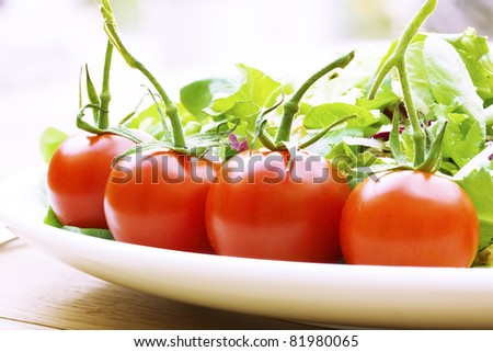 Vine tomatoes on a salad plate close up - stock photo
