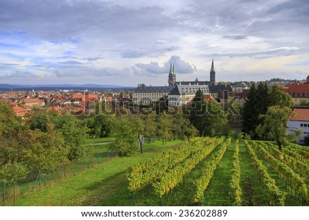 Vineyard and cathedral in Bamberg, Germany  - stock photo
