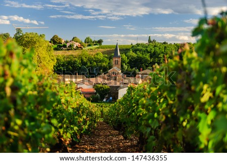 Vineyard and the town of Saint Julien in region Beaujolais, France - stock photo