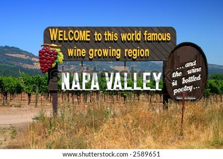 Vineyard at Sonoma and Napa Valley, California - stock photo