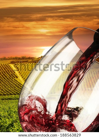 vineyard at the sunset in Italy - stock photo
