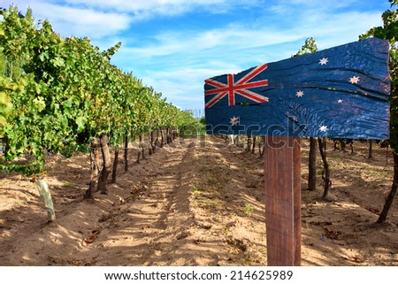 vineyard cabernet sauvignon from Australia - stock photo