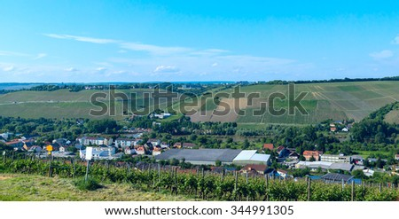 Vineyard in the German countryside  - stock photo