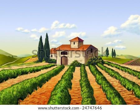 Vineyard in Tuscany, Italy. Original digital illustration. - stock photo