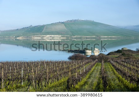 vineyard in winter on a lake, Sicily, Italy, Europe - stock photo