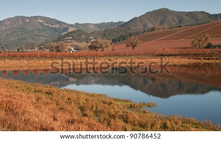 Vineyard Lake of Sonoma - stock photo