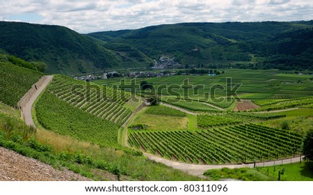 Vineyard Landscape - Mosel, Germany - stock photo