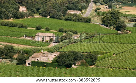 Vineyard of the South of France. Sunny summer day. Agricultural landscape panorama. Old stone house in French village. - stock photo