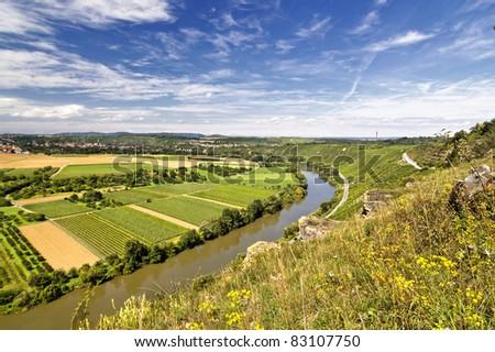Vineyard overlooking the river Neckar, Landscape of Hessigheim, Germany - stock photo