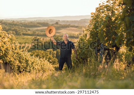 Vineyard owner with hat standing in his vineyard and salute - stock photo